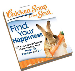 chicken-soup-for-the-soul-find-your-happiness